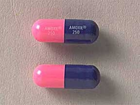 Generic Amoxillin 250 mg